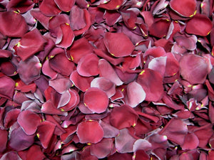 Freeze Dried Rose Petals - Burgundy