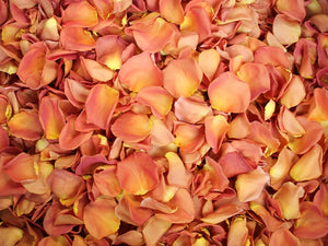 Freeze Dried Rose Petals - Coral