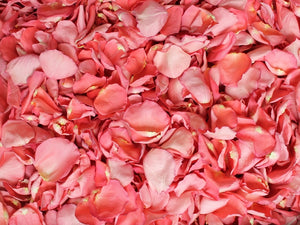 Freeze Dried Rose Petals - Flamingo