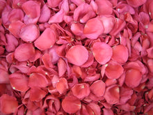 Load image into Gallery viewer, Freeze Dried Rose Petals - Hot Pink