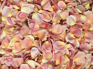 Freeze Dried Rose Petals - Peach