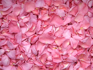 Freeze Dried Rose Petals - Pink