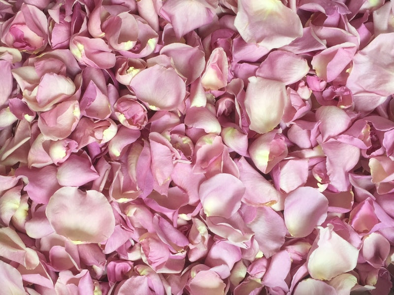 Freeze Dried Rose Petals - Rosy Mauve