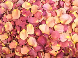 Freeze Dried Rose Petals - Sugarplum
