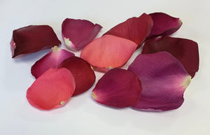 Freeze Dried Rose Petals - Be Mine Blend