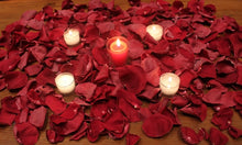 Load image into Gallery viewer, Freeze Dried Romance Package - Burgundy - 24 cups