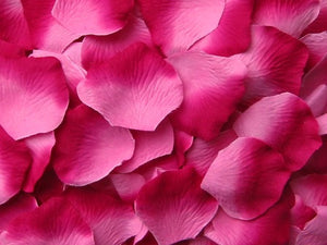 Berry Silk Rose Petals, 100 petals