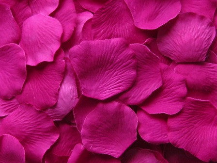 Raspberry Silk Rose Petals, Value Pack 1000 Petals