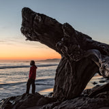 (Deposit) Olympic National Park August 16-20th, 2019