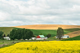Palouse, Washington 4-day Workshop May 17-20, 2019