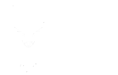 BYSTAG
