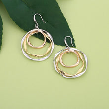 Load image into Gallery viewer, Multi circle earrings
