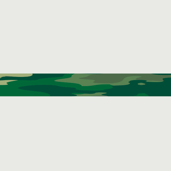 Design Your Own Bomb: Green Camo