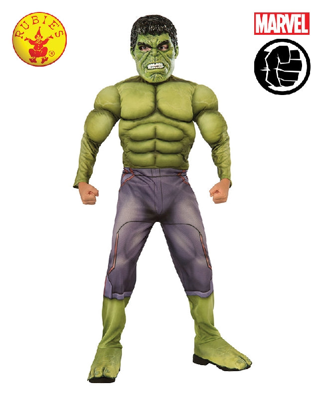 AVENGERS Age of Ultron Incredible Hulk Deluxe Boys Costume - Salsa and Gigi