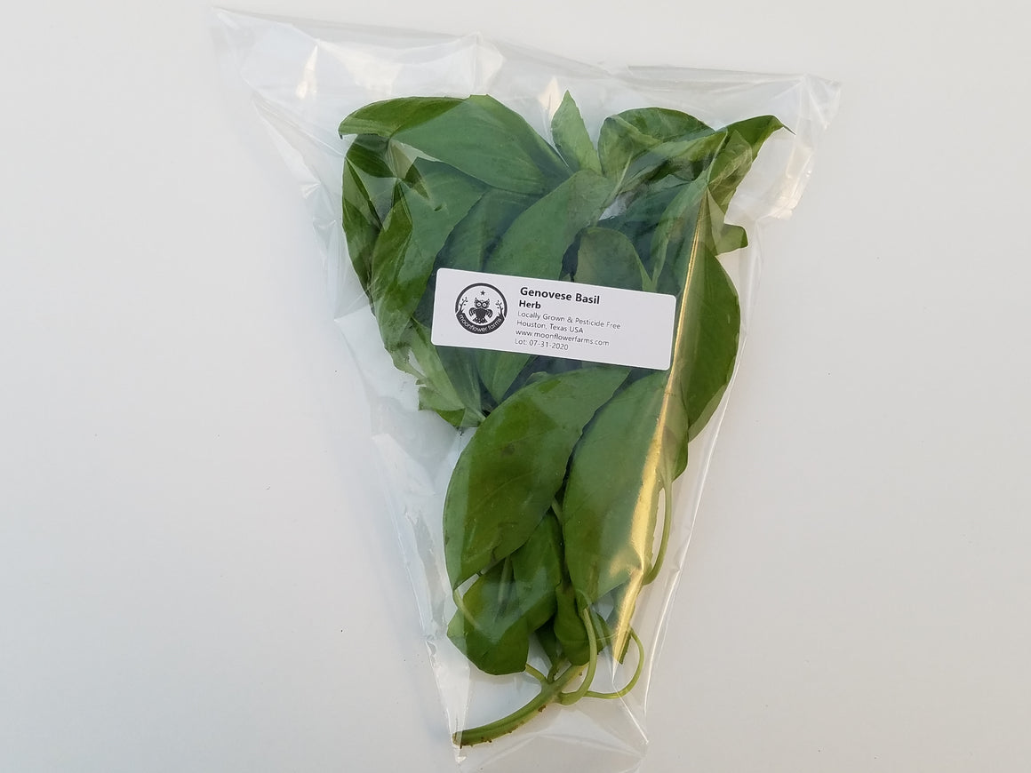 Fresh Basil Bundle - Genovese