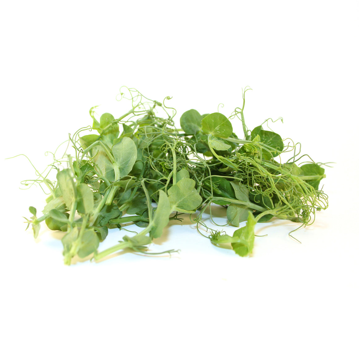 Pea Shoots - 2oz & 4oz