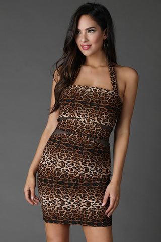 Leopard Print Mesh Dress - iBESTEST.com