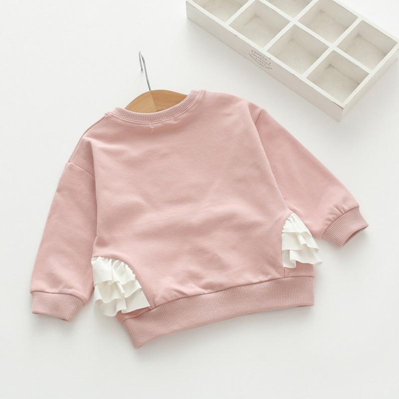 Swan Sweatshirt (4 color options) - Darling Little One