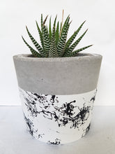 Marble Luxx Indoor Concrete Planter