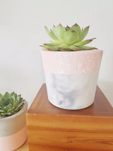 New White Splash Planter