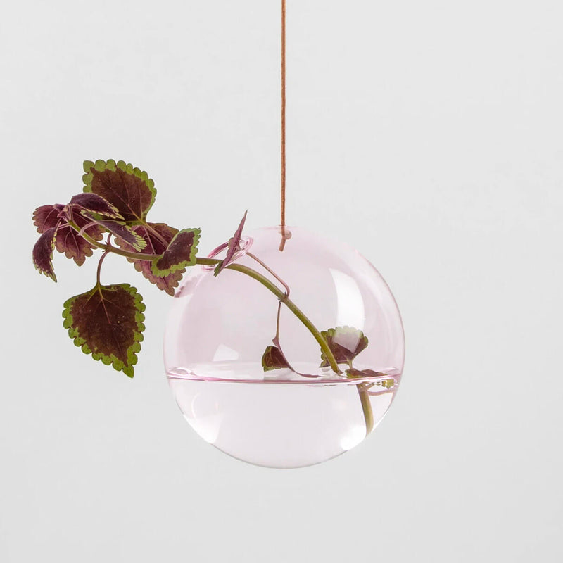 Hanging Flower Vase - Bubble Medium - Rose