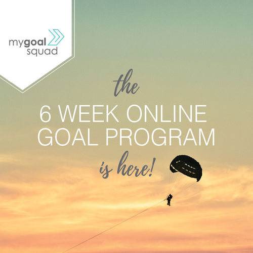 6 WEEK ONLINE GOAL KICKING PROGRAM by my goal squad