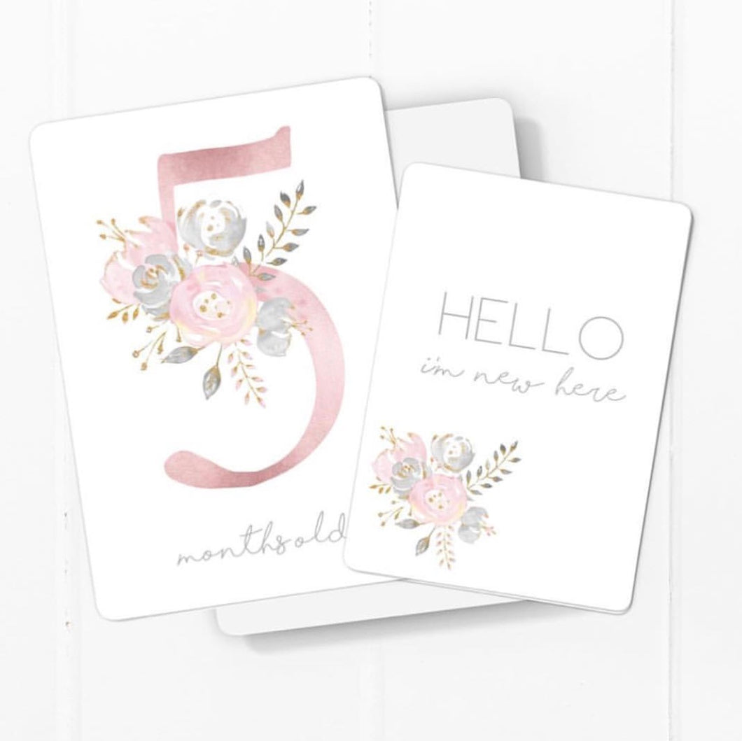 Toucan Dusty Pink Baby Milestone Cards
