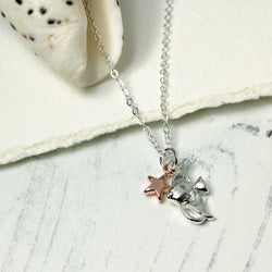 Silver Plated Angel Fish And Rose Gold Star Necklace