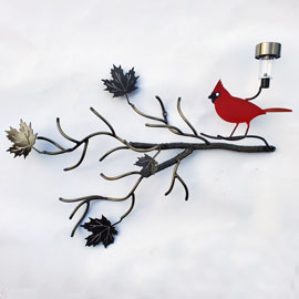 Red Cardinal bird with maple tree and light