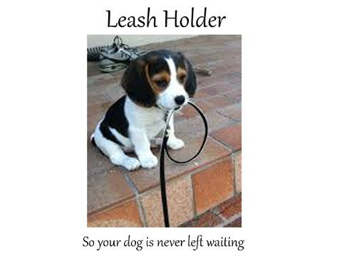 Dog Leash Hook Metal Dog Paw: 3 Hooks Metal Wall-Mount Holder