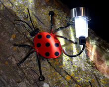 Lady Bug Solar Light Family