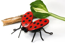 Large red with black spots Metal Ladybug Flying With Wings Open: Cropped white coloure / colored backdropincluding brown stick and green leaf