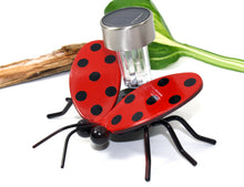 Solar Light Ladybug On A Garden Stake: Metal Art Flying Lady Bugs On Stakes