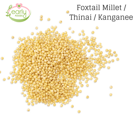 Foxtail Millet or Korra or Thinai