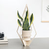 Wooden Plant hanger - Diamond