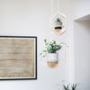 Wooden Plant hanger - Hexagon