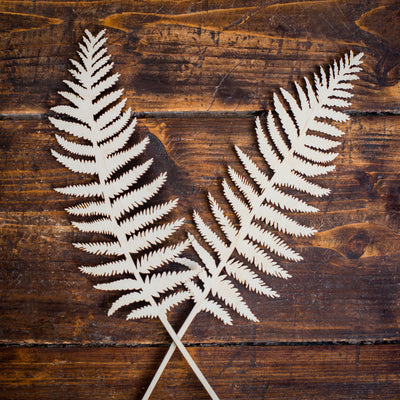 wooden ferns