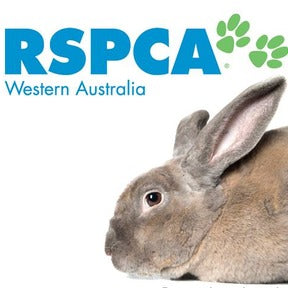 RSPCA WA - Community Pod - Coffee that Gives