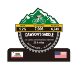 Dawson's Saddle Trophy- South Antelope, CA