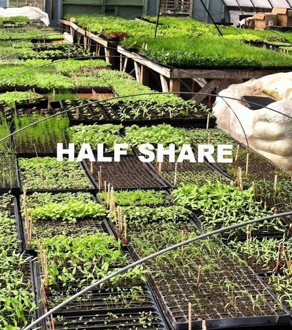 Spring Veggie HALF Share - 2020 membership required - begins week of May 24 for 2 pickups