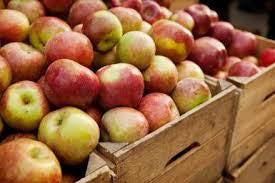 Fall Fruit Share 2019 - membership required - begins week of September 29 for 8 weeks