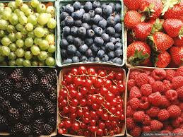 Summer Fruit Share - 2020 membership required - begins week of June 21 for 14 weeks