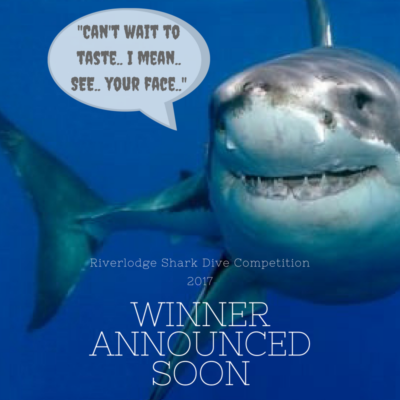 Shark Cage Dive Competition: Winner Announced Soon!