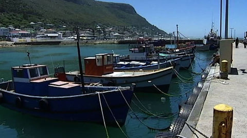 Cape Fishermen Culture