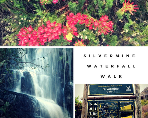 Silvermine Waterfall Walk Cape Town