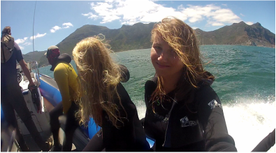 Boat Ride To Snorkel With The Seals At Seal Island Cape Town