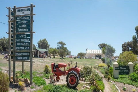 Activities For Kids In Cape Town, Imhoff Farm