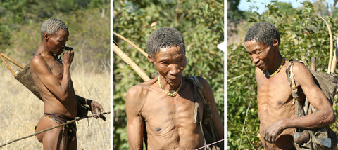 Bushmen, History of Cape Town and South Africa
