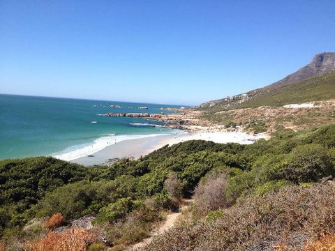 Sandy Bay, Top 10 Beaches In Cape Town