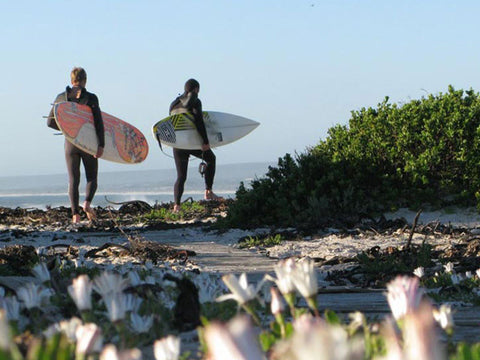 Surfing Guides In Cape Town